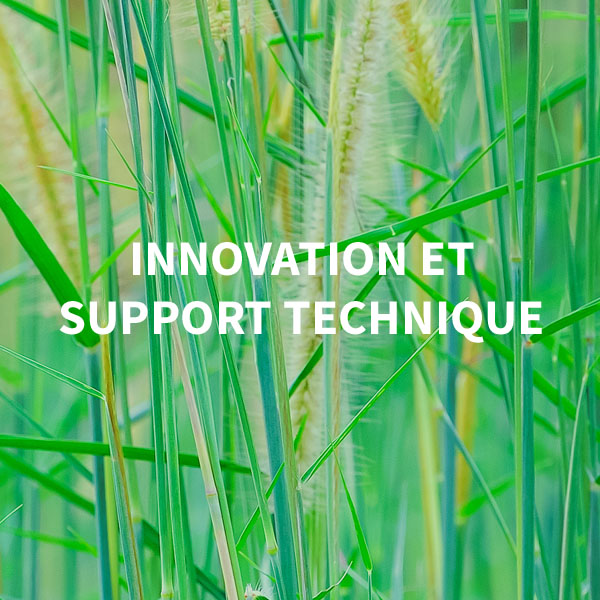Innovation et support technique