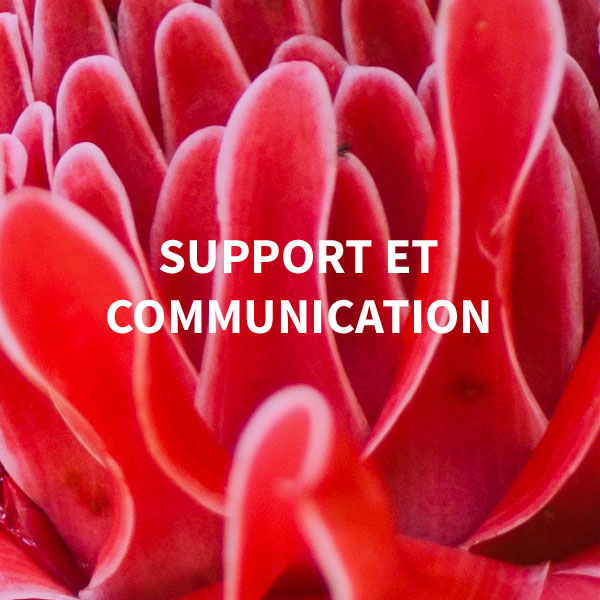 Support et communication